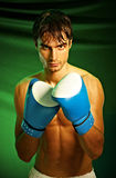 Boxing. Man in boxing gloves Royalty Free Stock Image