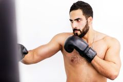The Boxing Man royalty free stock photography