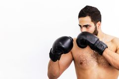 The Boxing Man royalty free stock images
