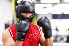 The Boxing Man royalty free stock image