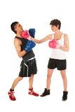 Boxing man and woman Stock Photography