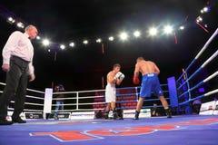 Boxing match: Denis Caryuk vs Khrvozhe Sep. MOSCOW - JANUARY 08:  Light heavyweight (85 kg) Denis Caryuk (L)  Kremlin bears (Russia) vs. Khrvozhe Sep (R) PARIS Royalty Free Stock Images