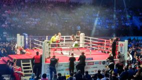 Boxing match. Between Dmitry Kudryashov and Durudola in Rostov-on-Don Russia Stock Image