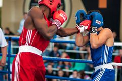 Boxing match Royalty Free Stock Photos