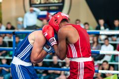 A boxing match Osleys Iglesias, Cuba and Salah Mutselkhanov, Russia. Victory Osleys Iglesias Stock Photo