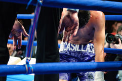Boxing match for WBC Intercontinental Title Stock Photography