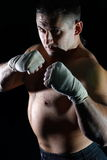 Boxing men. The young sportsman is engaged in boxing and poses in a hall before a pear Royalty Free Stock Photo