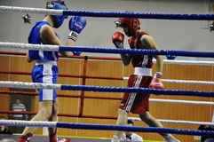 Boxing for men. XVII all-boxing tournament grade b championships on Northern Territory administration prizes, Orenburg Royalty Free Stock Photo