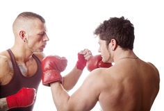 Boxing men. Two muscular men boxing; isolated on white Stock Images