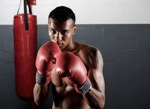 Boxing portrait Stock Photos