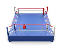 Boxing ring and gloves on the ropes. 3d illustration. Boxing ring and gloves on the ropes  on white background. 3d rendering Royalty Free Stock Photo
