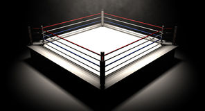 Boxing Ring Spotlit Dark Stock Image