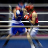 Boxing on a ring Royalty Free Stock Photo