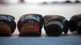 Boxing rubber gloves lie at the arena in a row on. Boxing rubber gloves lie in the arena in a row on blurred background. Video shift motion 1920*1080 stock video footage