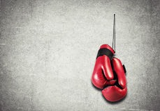 Boxing sport concept Stock Photos