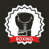 Boxing sport Royalty Free Stock Images
