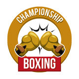 Boxing sport Royalty Free Stock Photography