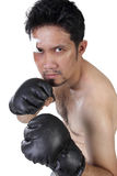 Boxing stance. MMA fighter with orthodox boxing stance in defense position, isolated on white background Royalty Free Stock Photography