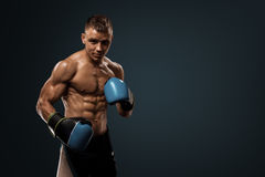 Boxing on studio. Sportsmen boxing with gloves on studio Royalty Free Stock Photos