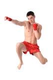 Boxing time Stock Photos