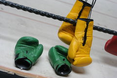 Boxing tool. Boxing tools. After knock out Stock Photo