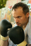 Boxing training Stock Image