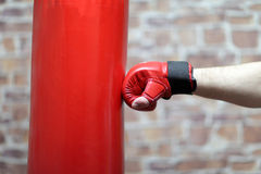 Boxing training Royalty Free Stock Photography