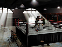 Free Boxing Training Royalty Free Stock Photography - 21954277