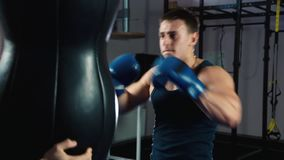 Boxing training. Close up of a boxer: who trains stock video