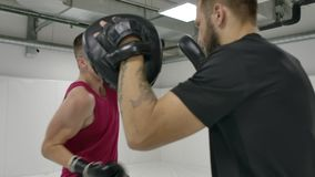 At a Boxing training session in the white room, a man beats his gloved hands on the coach`s paws. Perform deviations and. Dives from the blows stock video footage