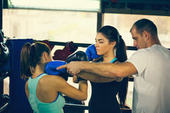 Boxing Training Royalty Free Stock Images
