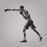 Boxing. Royalty Free Stock Photo