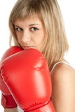 Boxing woman Stock Image