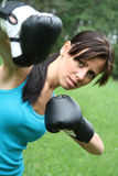 Boxing woman stock images