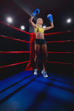 Boxing Woman Stock Photos