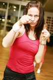 Boxing woman royalty free stock images