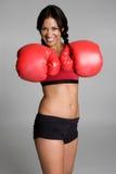 Boxing Woman Royalty Free Stock Photos