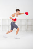 Boxing workout Royalty Free Stock Images