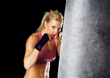 Boxing Workout Stock Photography
