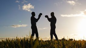 Boxing workout with trainer outdoors. Low angle shot of opponents` silhouettes in boxing gloves sparring in a field at. Sunset. Fighter learning to take a punch stock video footage