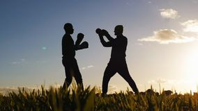Boxing workout with trainer outdoors. Low angle shot of opponents` silhouettes in boxing gloves sparring in a field at. Sunset. Fighter learning to hit triple stock footage
