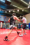 Boxing workout training Stock Images