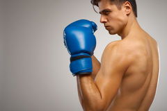 Boxing. Young Boxer ready to fight Royalty Free Stock Photos