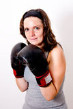 Boxing young women. On light background Royalty Free Stock Photography