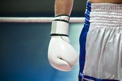 boxning Arkivfoto