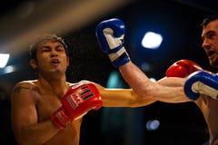 boxning som flyger thai uppercut för muay svett fotografering för bildbyråer