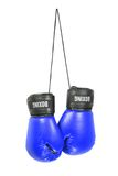 boxninghandskar Fotografering för Bildbyråer
