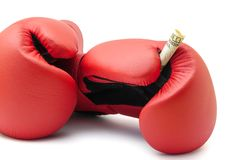 Boxninghandskar rymmer en US dollarräkning royaltyfria bilder