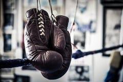 Boxninghandskar som h?nger p? repen av en boxningsring royaltyfri bild
