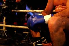 Boxninghandskar under en match för yrkesmässig boxning Arkivfoto
